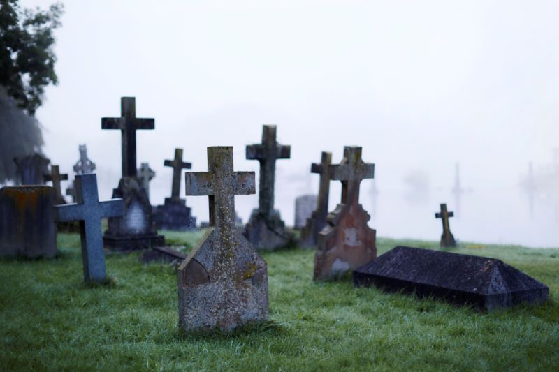 The Graveyard of the Streaming Wars